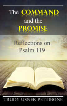 The Command and the Promise. Reflections on Psalm 119